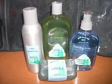 Bath & body works mountain Frost Gift set-bag, refresher, shower shave gel, soap