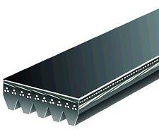 Serpentine Belt  Pro-1  K050715