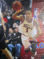 Derrick Rose Signed 18x24 Mounted Canvas Print Photo, Bulls - Global Authentics