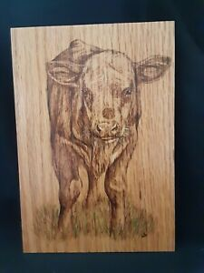 Hereford Calf - hand made, wood burnt picture on oak