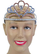 Tiara Plastic Red Silver Blue Queens Fairy Tale Fancy Dress Adult Kids Princess