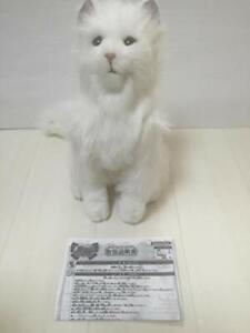 Yume Neko Celeb Dream Cat SEGA TOYS Robot Robotic Pet Series Dream Celeb Japan