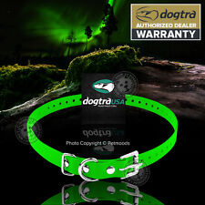 """Dogtra Genuine Replacement Dog Collar Strap 3/4""""x 28"""" Green 175NCP 200NCP 202NCP"""