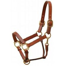 Horse Size Premium Triple Stitched Leather Halter Medium Brown w/ Brass Fittings