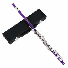 More details for flute 16 hole closed nickel plated beginner c key beginner with padded case e6s4