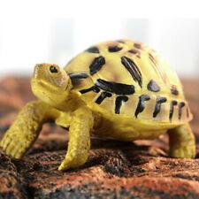 Tortue à résine vivante Simulée Inde Star Tortoise Animal Statue