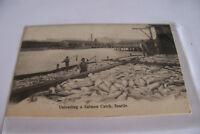 Rare Vintage Antique Postcard A1 Unloading Salmon Catch Fish Seattle Washington