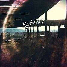 Feel Not Bad by SW/MM/NG (Swimming) Vinyl LP Record Release 4/21/15