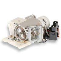 Alda PQ Beamerlampe / Projektorlampe für CASIO XJ-S31 Projektoren, mit Gehäuse