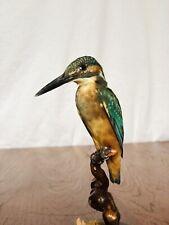 Antique Kingfisher Taxidermy Taxidermie Curiosity wunderkammer Stuffed Bird