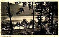 Gemündener Maar bei Daun Eifel s/w AK ~1950/60 Waldpartie am Maar ungelaufen