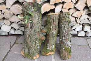 Apfelholz Holzstamm Drechsel-holz Apfelstamm Baumstamm Apfelbaum Drechseln