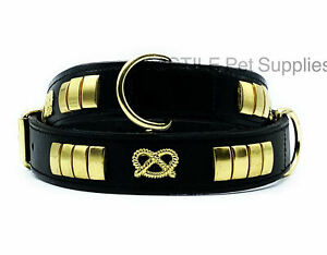 LEATHER STUDDED DOG COLLAR WITH STAFFY KNOT BLACK 1.5 INCH WIDE BRASS STUDS