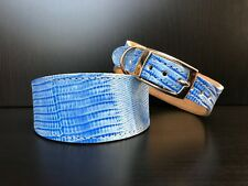 S/M Leather Dog Collar LINED Greyhound Whippet Saluki BLUE REPTILE PATTERN