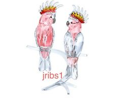 Swarovski PINK COCKATOOS *BRAND NEW in BOX* 5244651 CRYSTAL FIGURINE BIRD