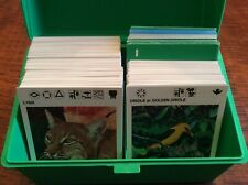 1975 Illustrated Wildlife Treasury 430  Plus Cards & Carrying Case Animal Facts