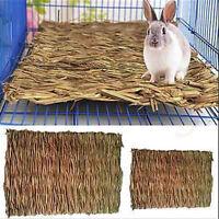 Small Animal Rabbit Rat Hamster Grass Chew Mat Breakers Toy House pad 26x16cm