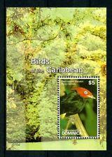dominica ca 2007 bird aves vogel oiseaux pájaro ucello PIPRA  禽 鳥 ms1v mnh **