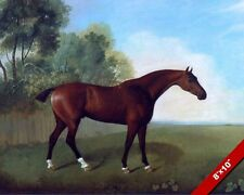 REDDISH BROWN BAY HORSE IN A GREEN FIELD PAINTING ART REAL CANVAS PRINT