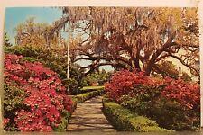 Louisiana LA Baton Rouge Capitol Gardens Early Spring Postcard Old Vintage Card