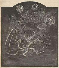 A3979 Pesci Fosforescenti - Incisione - Stampa Antica del 1889