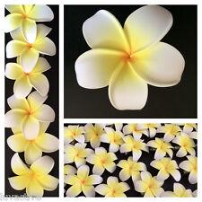 Hawaiian Plumeria Foam Flower Hair Clip White Yellow