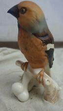 feine Porzellan Figur Vogel von Goebel