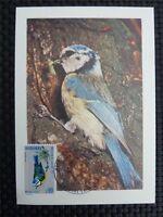 ANDORRA MK 1973 FAUNA VÖGEL BIRDS MAXIMUMKARTE CARTE MAXIMUM CARD MC CM c822