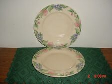 "2-PIECE PFALTZGRAFF ""GARDEN PARTY"" 10 1/2"" DINNER PLATES/CRM-GREEN/FREE SHIP!"