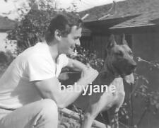 013 Edson Stroll Candid With His Great Dane Dog Photo