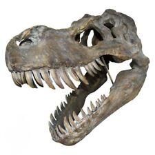 More details for large resin replica t-rex skull 51.5cm