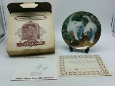 A Chance Meeting White American Shorthairs Knowles Plate Amy Brackenbury Cat e25