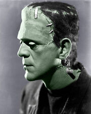 Boris Karloff Photo 8x10-  Bride Frankenstein COLORIZED - Buy Any 2 Get 1 Free