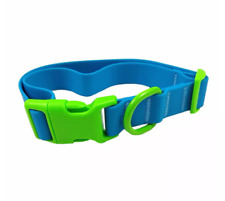 Solid Blue and Green Neon Silicone with Clip Buckle Dog Collar - Sun Squad