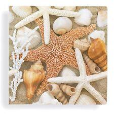Sea Shells Starfish Cocktail Beverage Napkin - 24 Count - 5in x 5in Sandy Beach