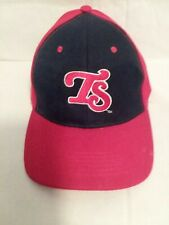 Tennessee SMOKIES double AA affiliate of Chicago Cubs baseball hat cap