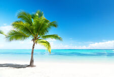 STUNNING COCONUT TREE DESERT ISLAND CANVAS #45 TROPICAL BEACH PICTURE WALL ART