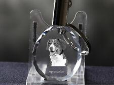 Appenzeller Sennenhund, Hund Kristall rund Schlüsselbund, Crystal Animals CH