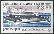 Taaf Fsat Baleine Petit Rorqual Whale Walfische Non Dentele Imperf Essay ** 1995