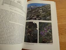 ALPINE HOUSE: Its Plants and Purposes (Rock gardene... by Rolfe, Robert Hardback