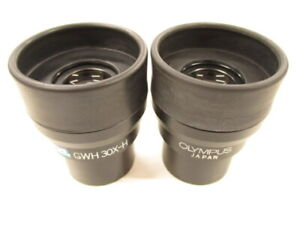 Olympus GSWH 30X-H Stereomicroscope Stereo Microscope Eyepieces Lens Pair