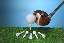 Cavities (Cavitee) Tooth shaped / molar shaped golf tees plastic.