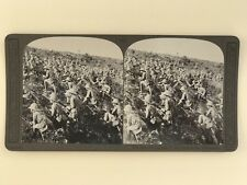Grande Guerre Dardanelles Turquie WW1 Photo Stereo Stereoview Vintage