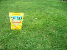 Turf Total Turf Patch Grass Seed, Covers 250 Sq Feet