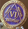 6 Year AA Medallion Purple Gold Plated Alcoholics Anonymous Sobriety Chip Coin