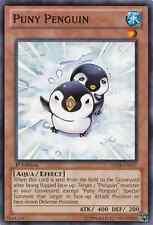 3 x Puny Penguin (ABYR-EN037) - Common - Near Mint - 1st Edition