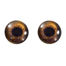 16mm Redtail Hawk Bird Glass Eyes, Sculptures Jewelry Making Taxidermy Art Dolls