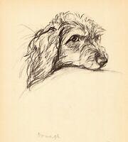 1940 Antique Dachshund Dog Print Lucy Dawson Dachshund Art Illustration  3839r