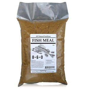 FISH Meal 🔥 Organic Fish Fertilizer 8-6-0 in Bulk