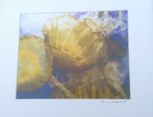 """Eric Reese Photography Jellyfish 2007 signed fine print Whitefish MT 7.5"""" x 9.5"""""""